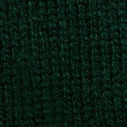 19 Verde Oscuro